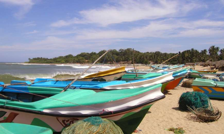 Colourful fishing boats on a palm fringe beach at Arugam, Sri Lanka