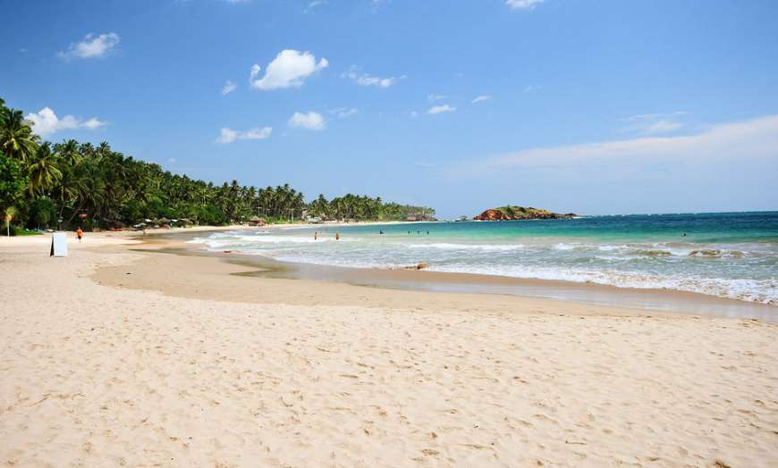 White sand beach with palm trees in Mirissa, Sri Lanka
