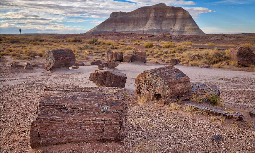 Eerie landscapes of the Petrified Forest in Holbrook, Arizona