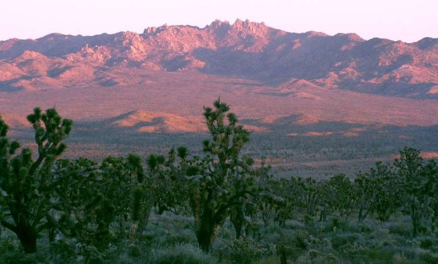 Pink hues of the Mojave National Preserve in Baker, California