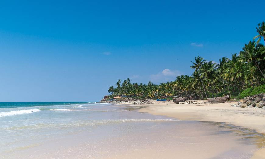 White sand, palm trees and blue sea at a beach in Kerala, India