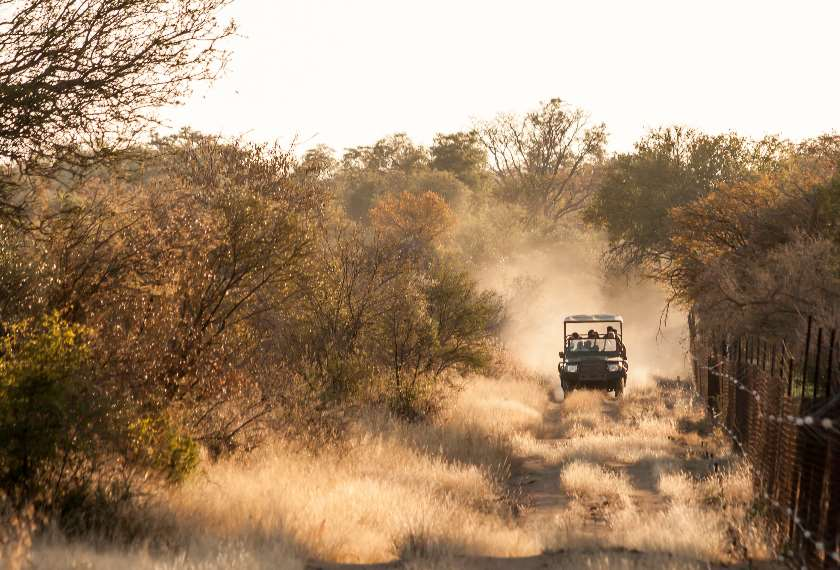 Jeep on a game drive travelling along a dusty South African road