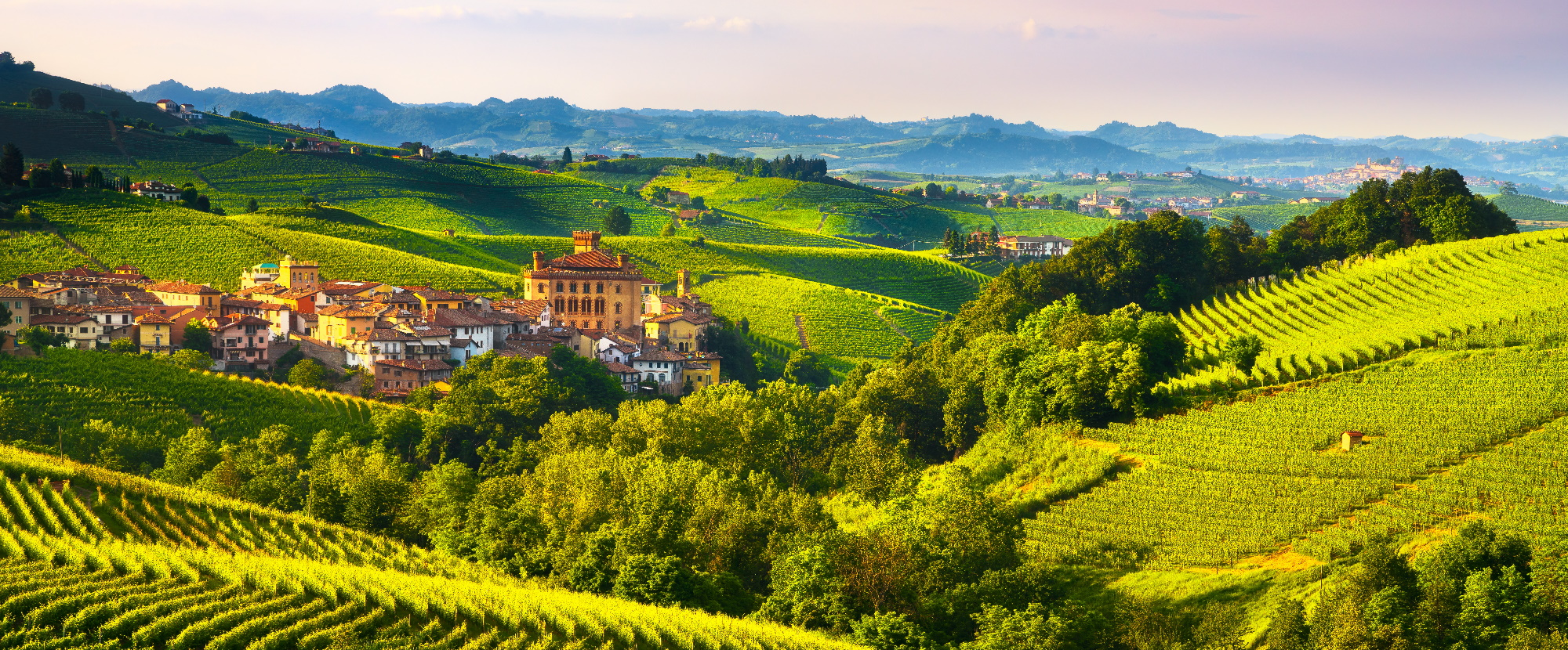 Unmissable Food and Drink Experiences in Italy