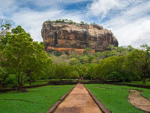 Path surrounded by dense forest with the mountain fortress of Sigiriya in the background
