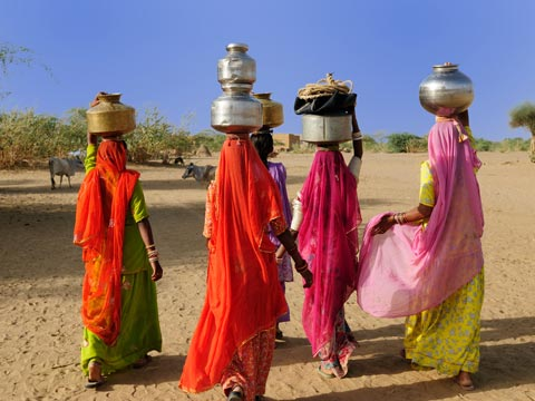 Four women in colourful saris carrying water in Rajasthan