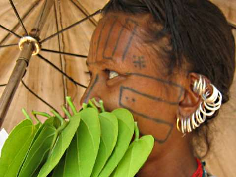 Woman with traditional facial markings holding leaves in Orissa