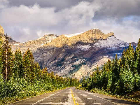 Icefields Parkway highway in the Canadian Rockies surrounded by pine trees and large mountains