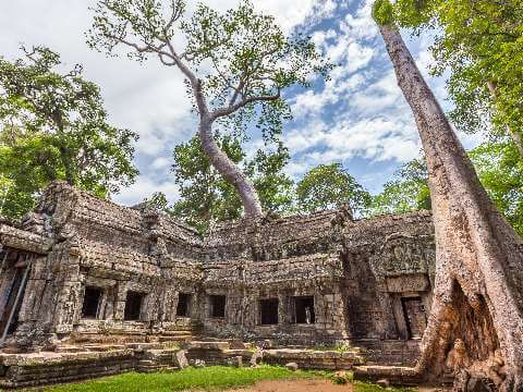 Ancient stone temple of Ta Prohm surrounded by trees and roots