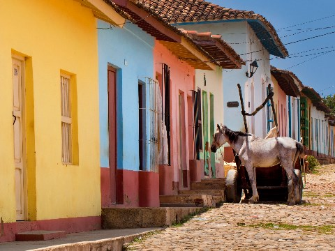 Multi-coloured homes alongside a cobbled street and horse in Trinidad, Cuba