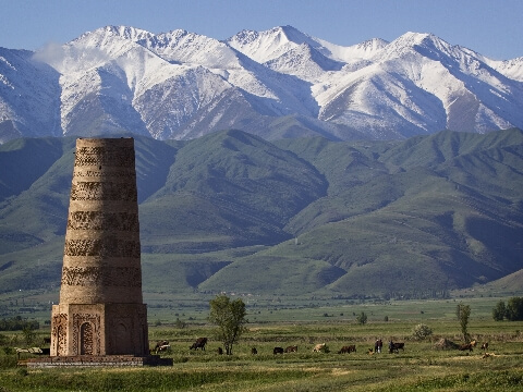 Stone tower surrounded by pastureland with snow-capped mountains in the background