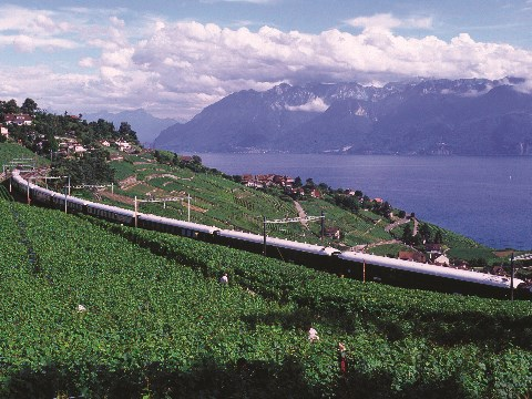 Aerial view of the  Venice Simplon-Orient-Express travelling through the European countryside