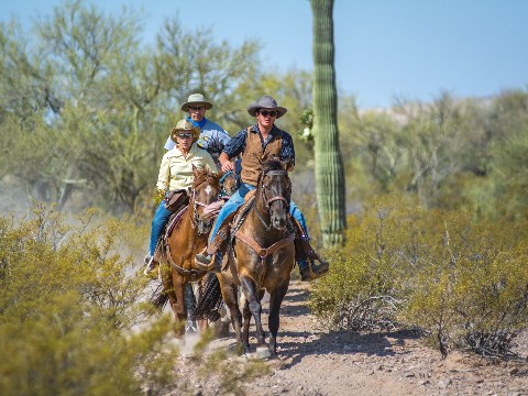 Group of people riding horses down a desert trail