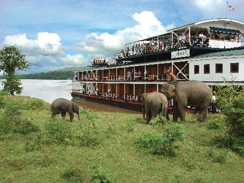 Pandaw cruise boat moored on a river banks next to elephants